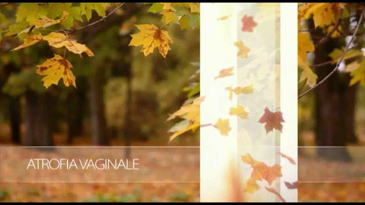 MonnaLisa-Touch-ITA-NEW_1280.flv_snapshot_00.26_2015.01.21_16.46.27