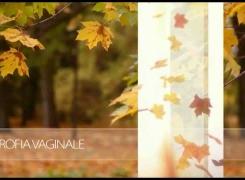 MonnaLisa Touch™ – Esigi il meglio per la tua intima serenità